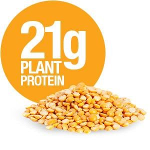 21-grams-of-plant-protein