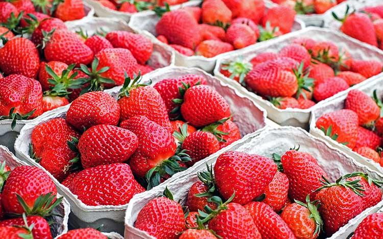 Strawberries Raw Vegan Living Food