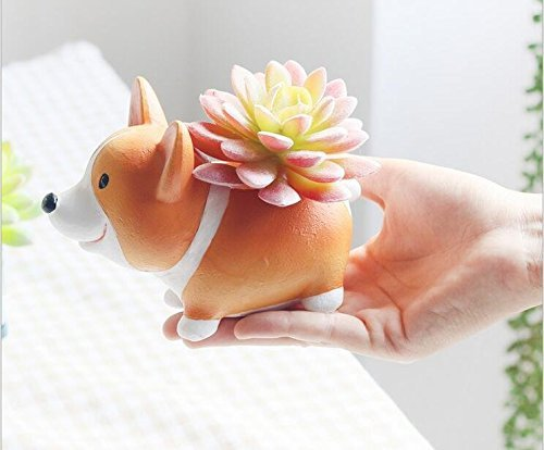mini-corgi-planter-pot-perfect-for-succulents