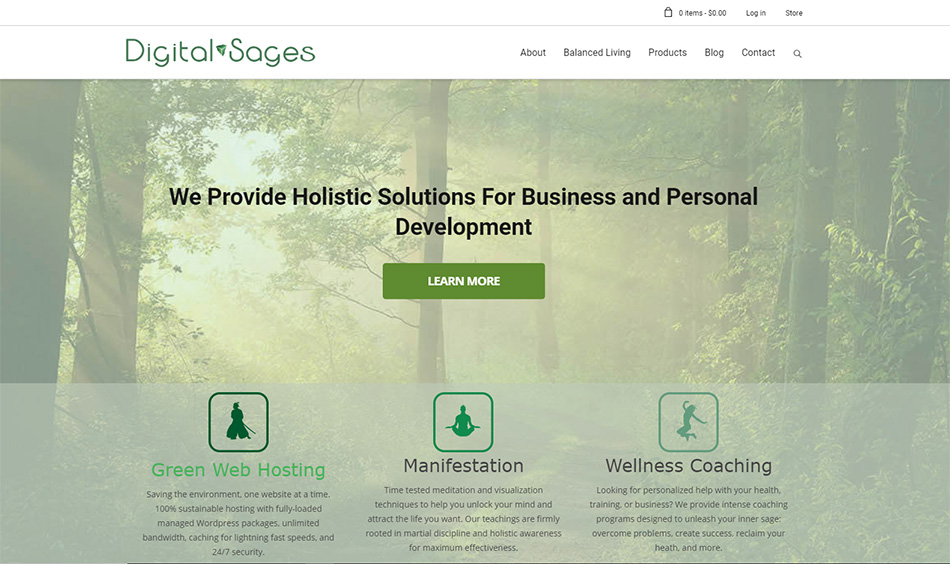 Digital Sages Portfolio
