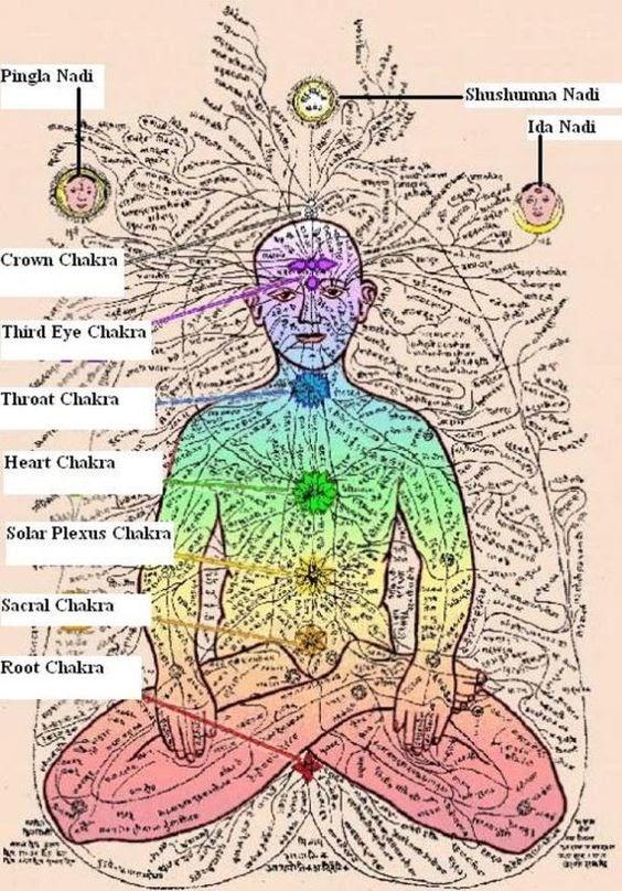 Chakra Nadi System