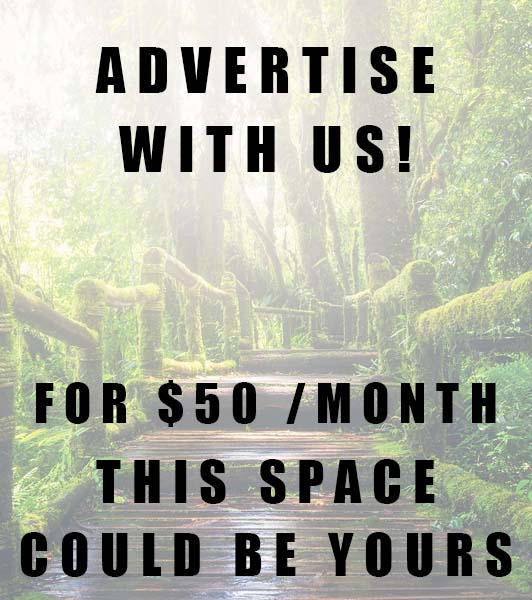 Advertise With Digital Sages