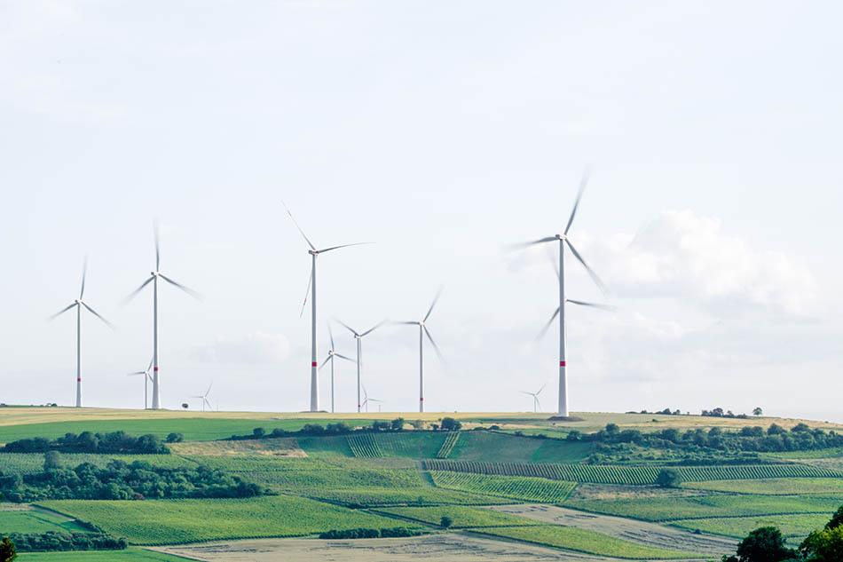 Mindfulness Climate Change